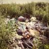 Земли сельскохозяйственного назначения под Малоархангельском превратили в свалку